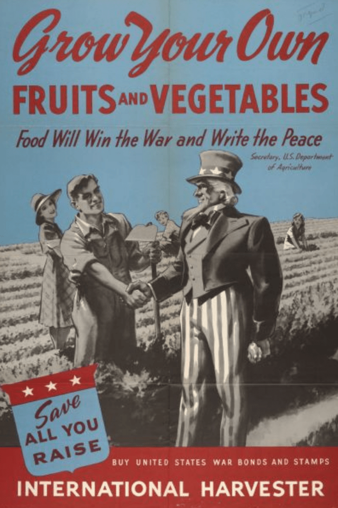 Grow your own sustainable fruits and vegetables
